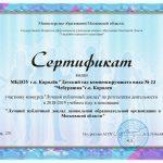 """Сертификат участника конкурса """"Лучший публичный доклад"""""""
